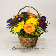 Mothers-Day-Flowers-009 $65 (plus tax and delivery) Classic Mothers Day basket of flowers with Circus Roses, Daisies, Mums, and Asters in keepsake wicker basket.