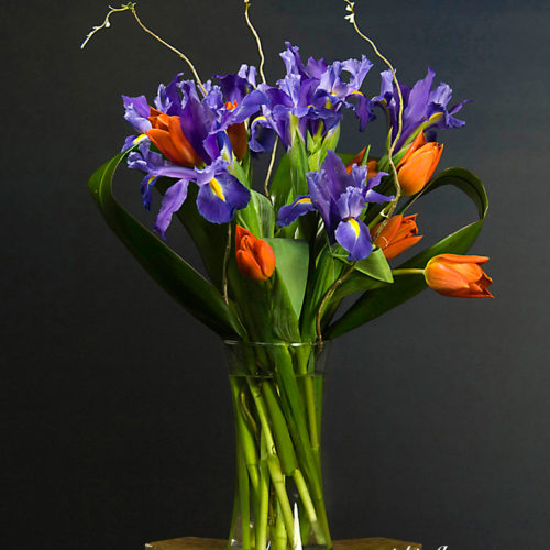 Photograph of Large and beautiful purple Iris and orange Tulips with Curly Willow in glass vase