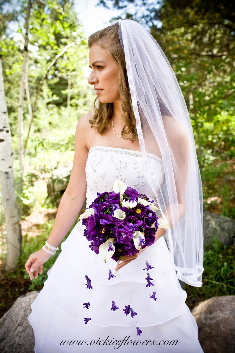 Photographic portrait of bride in gown and vail holding deep purple cascading bridal bouquet. Deep purple Calla Lilies, white Calla Lilies, and purple button Mums.