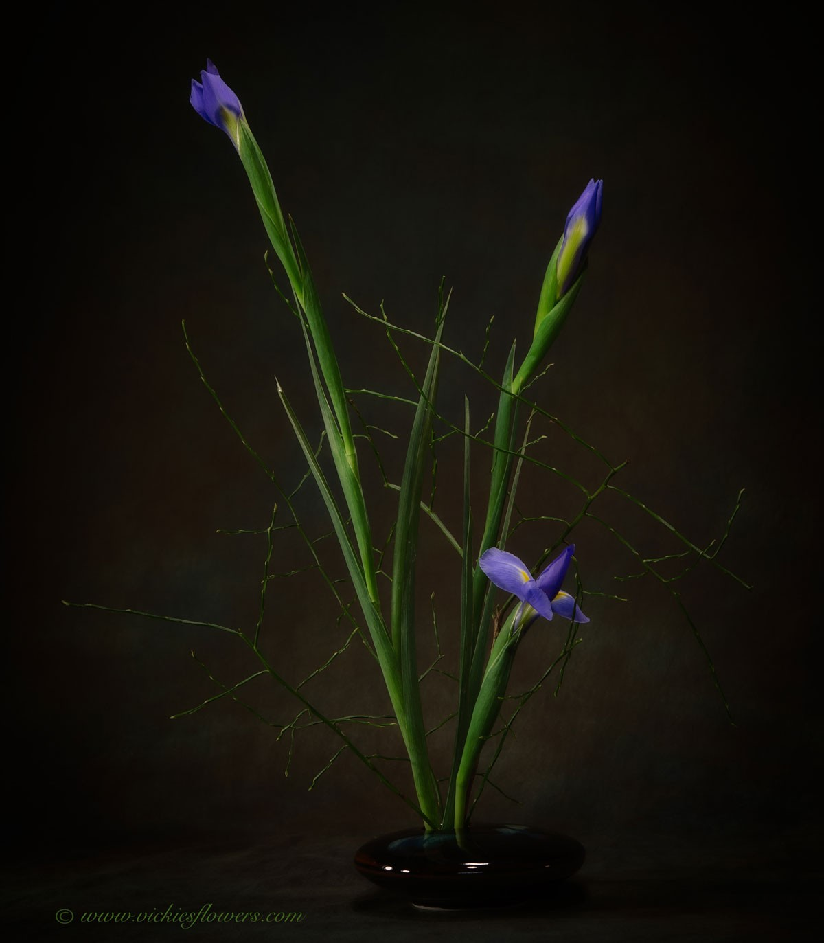 Beautiful detailed photograph of 3 blue Iris ikebana arrangement. This unique image is great for oriental or fengshui decor.